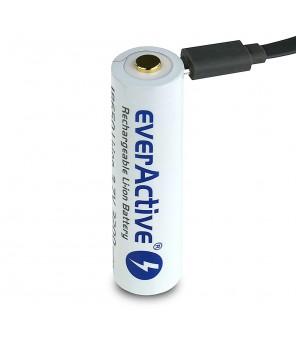18650 3200mAh baterija su micro USB everActive