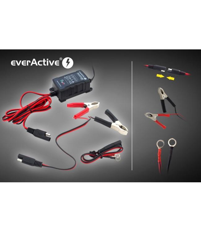 Automatinis akumuliatorių kroviklis everActive universalus automatinis 6/12V 1000mA
