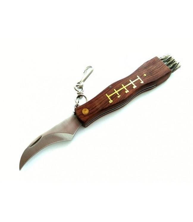 Grybautojo peilis