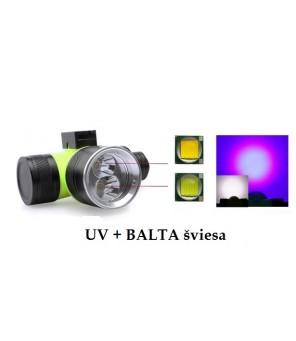 UV prožektorius nardymui su balta šviesa